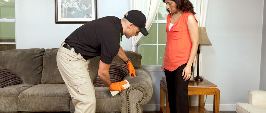 La Mirada, CA carpet upholstery cleaning