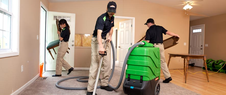 La Mirada, CA cleaning services
